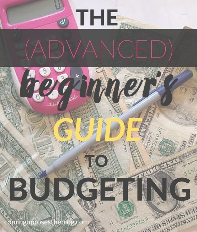 The (advanced) beginner's guide to budgeting, with FREE spreadsheet trackers on Coming Up Roses