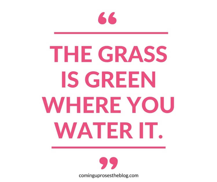 """""""The grass is green where you water it."""" - Monday Mantra on Coming Up Roses"""
