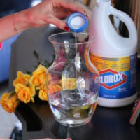 5 Cleaning Hacks using Bleach (for Millennials with no time!)