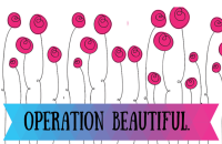 Operation Beautiful #2