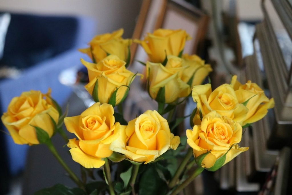 5 Cleaning Hacks using Bleach (for Millennials with no time!) - with Clorox, on Coming Up Roses - 2017 Reflections + 2018 New Year Goals (+ Reader Survey!) by popular Philadelphia style blogger Coming Up Roses
