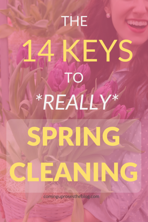 The 14 Keys to *Really* Spring Cleaning - I'm partnering with BJ's Wholesale Club on Coming Up Roses to share 14 things you HAVE to keep in mind if you're serious about spring cleaning RIGHT!