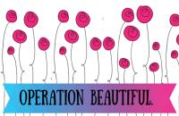 Operation Beautiful #2