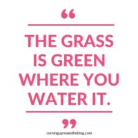 """The grass is green where you water it."""