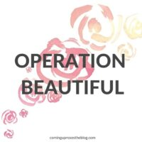 Operation Beautiful #24