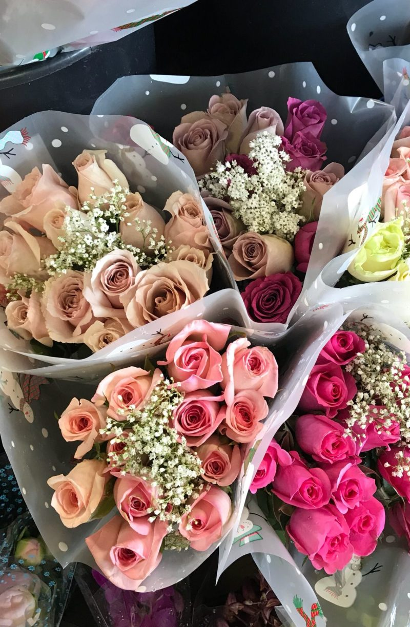 roses - How to get lucky on purpose by popular lifestyle blogger Coming Up Roses