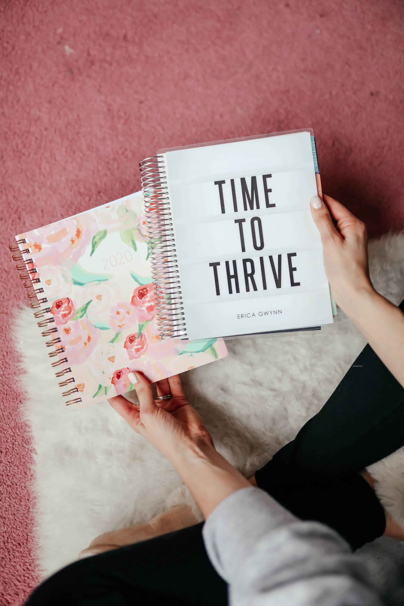 Cool Sh*t I Lovelovelove - Monthly Favorites, January 2020 on Coming Up Roses - Erin Condren planner
