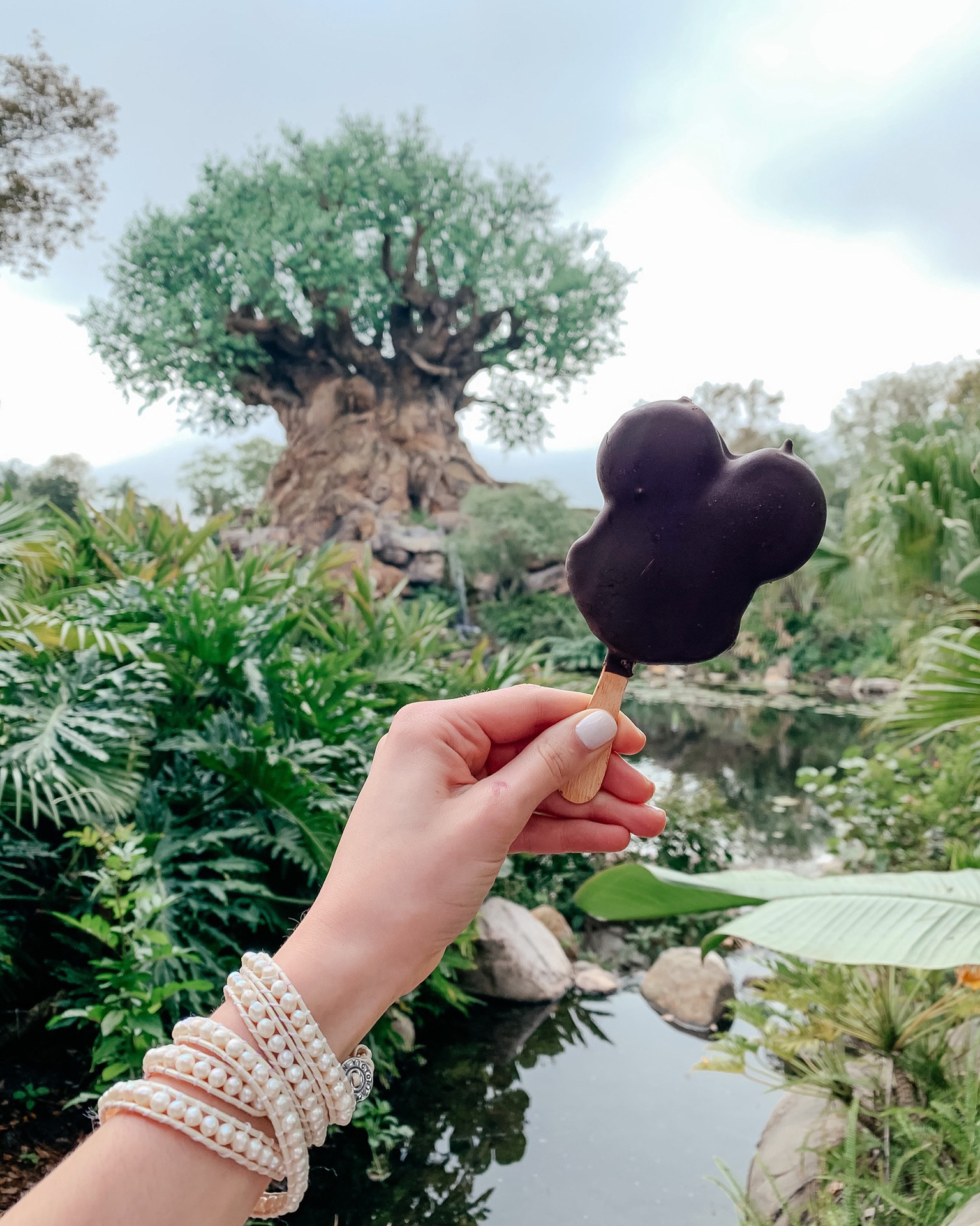 A Full Recap of #DisneyCreatorDays - 7 Days at Disney World and on a Disney Cruise! - Animal Kingdom
