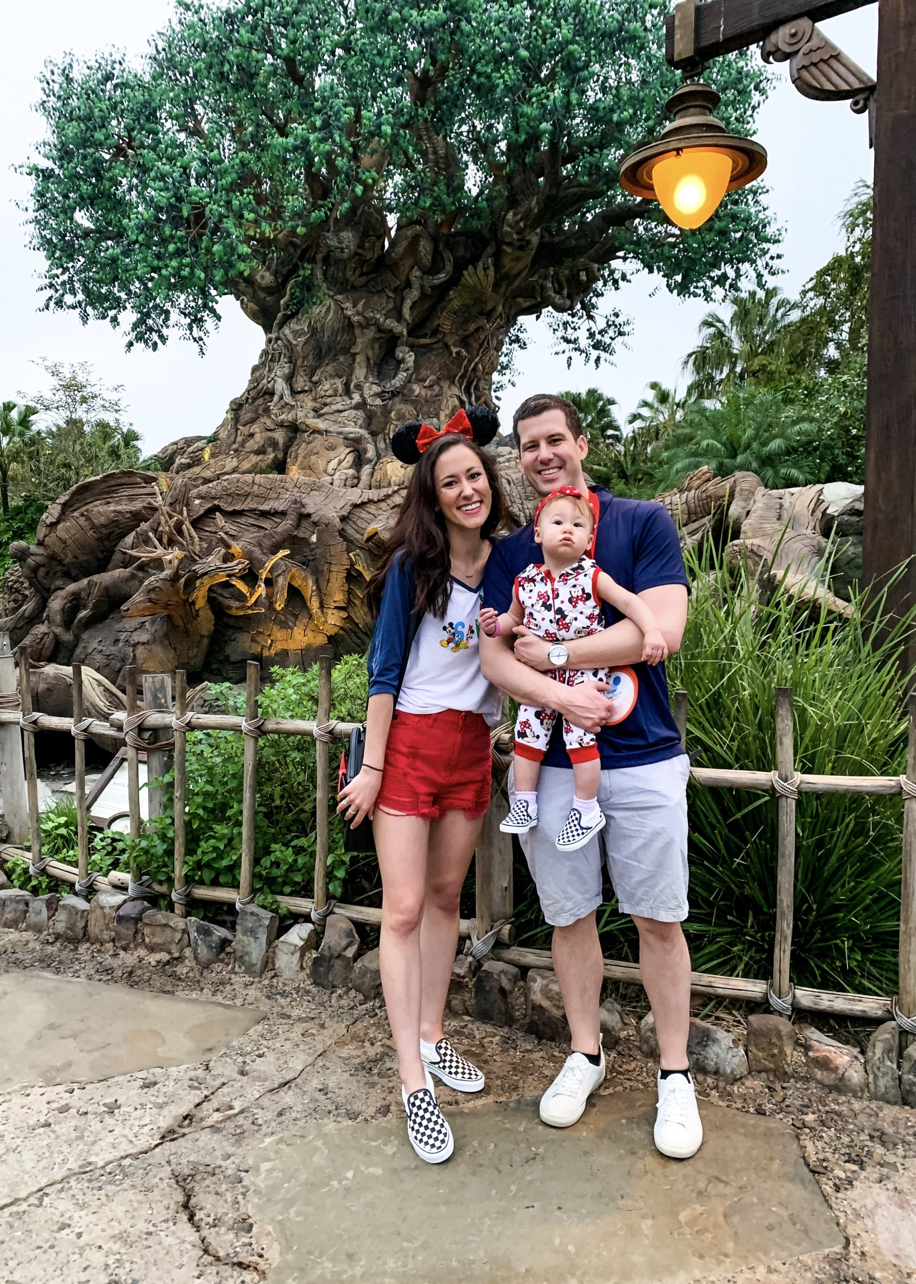 A Full Recap of #DisneyCreatorDays - 7 Days at Disney World and on a Disney Cruise! - Tree of Life in Animal Kingdom