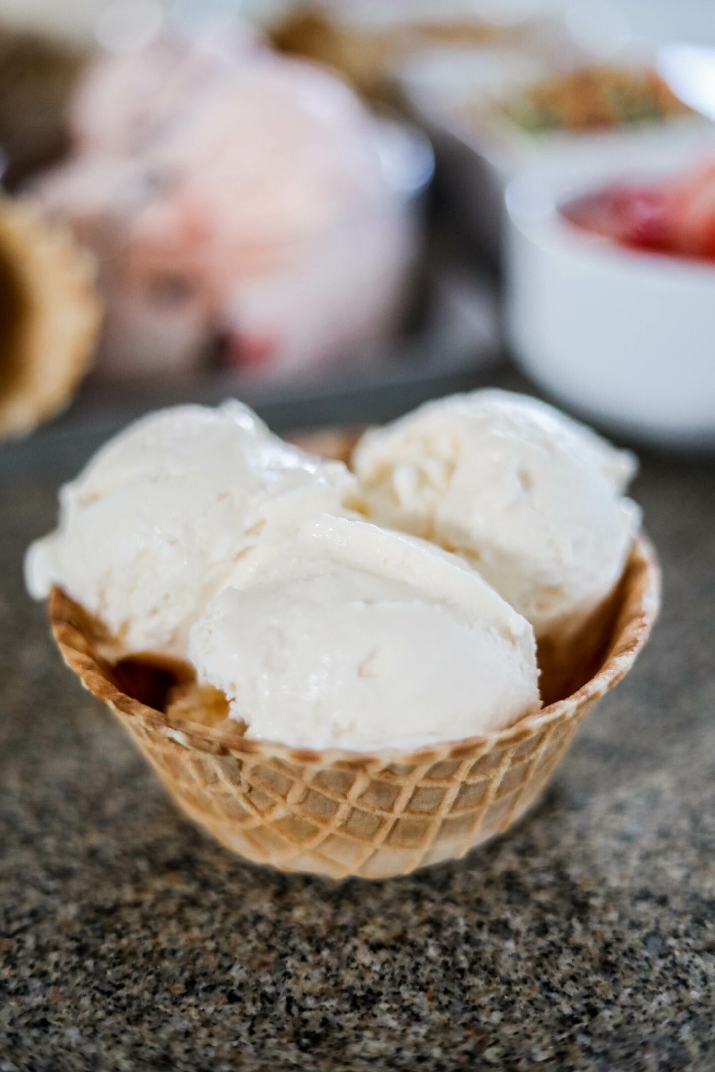 Hudsonville ice cream - creamery vanilla, on Coming Up Roses